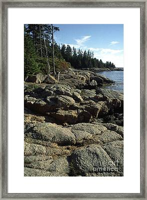 Deer Isle Shoreline Framed Print by Thomas R Fletcher
