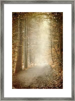 Early Morning Framed Print by Svetlana Sewell