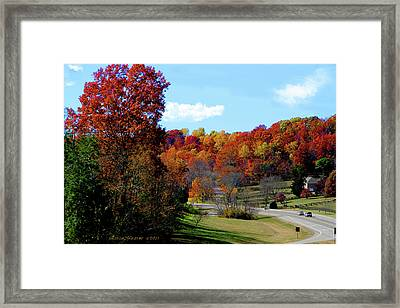 Fall Drive In Tennessee Framed Print by EricaMaxine  Price