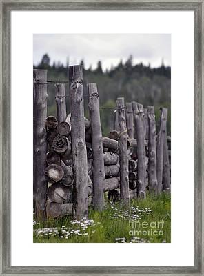 Fenced In  Framed Print by Juls Adams