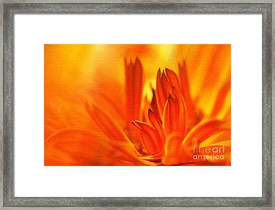 Fire Storm  Framed Print by Elaine Manley