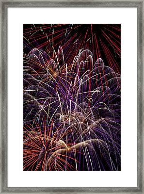 Fireworks Framed Print by Garry Gay