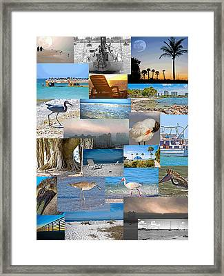 Florida Collage Framed Print by Betsy Knapp