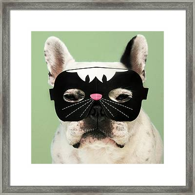 French Bulldog Framed Print by Retales Botijero