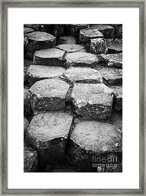 Giants Causeway Stones Northern Ireland Framed Print by Joe Fox