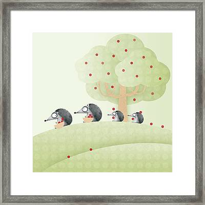 Hedgehogs Framed Print by ©cupofsnowflakes