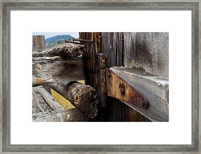 Hinged 3 Framed Print by Fran Riley