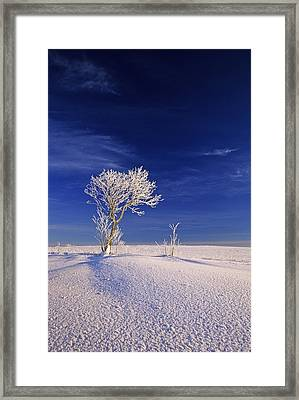 Hoar Frost On Trees, Bungay, Prince Framed Print by John Sylvester