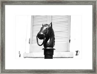 Horse Head Hitching Post Macro French Quarter New Orleans Black And White Diffuse Glow Digital Art Framed Print by Shawn O'Brien