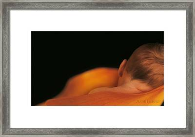 Calla Lily Framed Print featuring the photograph Jacob In Calla Lily by Anne Geddes