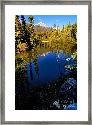 Jasper - Miette River Framed Print by Terry Elniski
