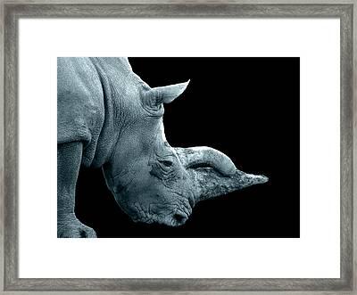 King Rhino Framed Print by Francis Erevan
