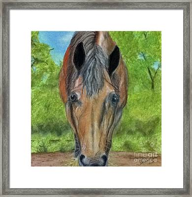 Lilly Framed Print by Teresa Vecere