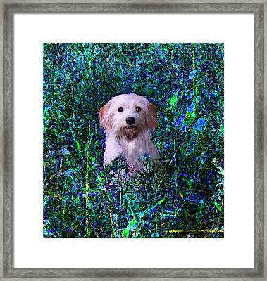 Lost In The Paint Framed Print by Brandy Nicole Neal