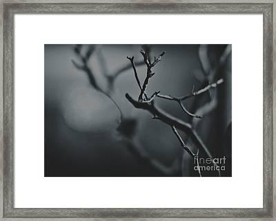 Love In Grey Framed Print by Lana Muriyan