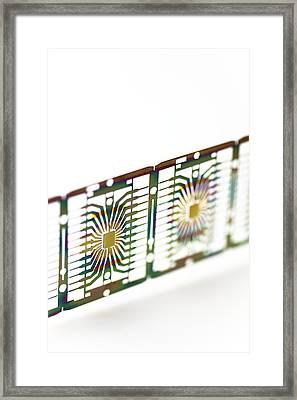 Microprocessor Chips Framed Print by Pasieka