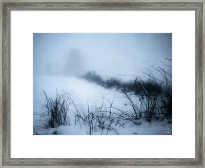 Misty Morning Framed Print by Gun Legler