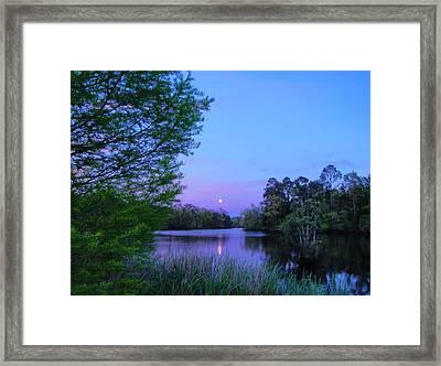 Moon Over The Bayou Framed Print by Anita Duff