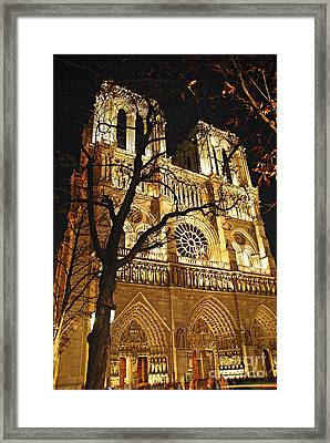 Notre Dame De Paris Framed Print by Elena Elisseeva