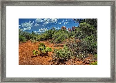 Oak Creek Trail Framed Print by Stephen Campbell
