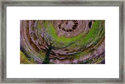 Orb Framed Print by Jean Noren