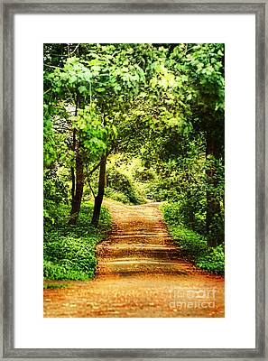 Path Framed Print by HD Connelly