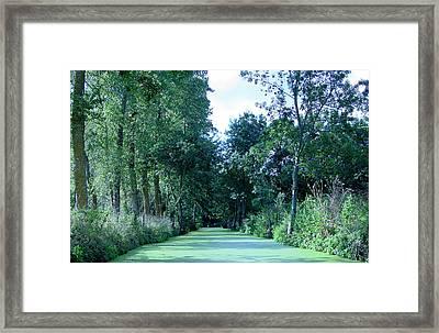 Poitevin Marsh Framed Print by Poitevin Marsh
