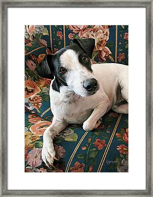 Ready To Go Framed Print by Kelley Gruver