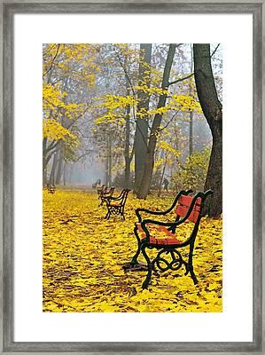 Red Benches In The Park Framed Print by Jaroslaw Grudzinski