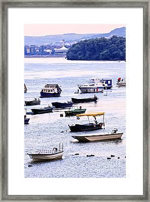 River Boats On Danube Framed Print by Elena Elisseeva