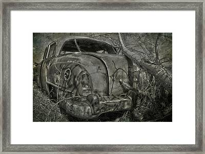Routes In Roots  Framed Print by JC Photography and Art