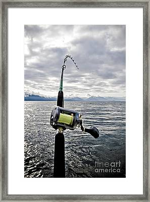 Salmon Fishing Rod Framed Print by Darcy Michaelchuk
