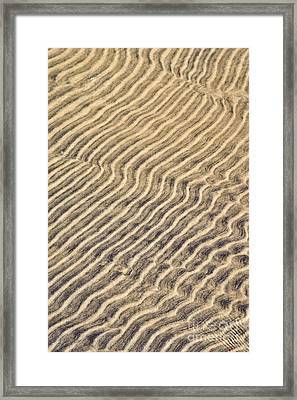Sand Ripples In Shallow Water Framed Print by Elena Elisseeva