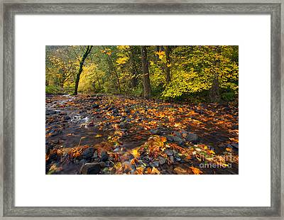 Scattered About Framed Print by Mike  Dawson