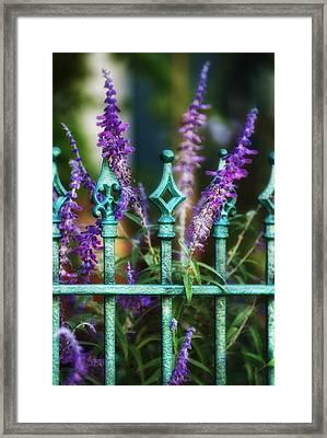 Secret Garden Framed Print by Brenda Bryant