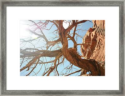 Sedona 013 Framed Print by Earl Bowser