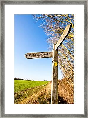 Sign Post Framed Print by Tom Gowanlock