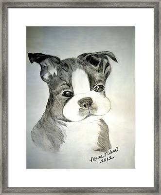 Simply Irresistable Framed Print by Maria Urso