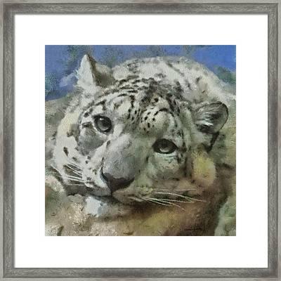Snow Leopard Painterly Framed Print by Ernie Echols