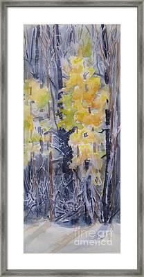 Snow Splattered 2 Framed Print by Mohamed Hirji
