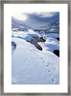 Snowy Landscape, Scotland Framed Print by Duncan Shaw