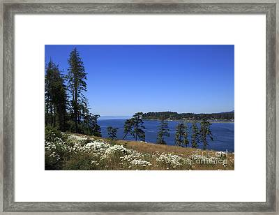 Sooke Harbour And The Strait Of Juan De Fuca Framed Print by Louise Heusinkveld