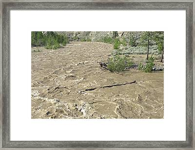 Spring Flood, Nicola River, Canada Framed Print by Kaj R. Svensson