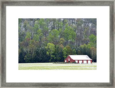 Spring Snow  Framed Print by Thomas R Fletcher