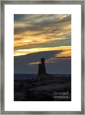 Standing Tall Framed Print by Sandra Bronstein