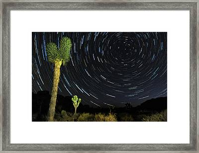 Star Trails In Joshua Tree Framed Print by Dung Ma