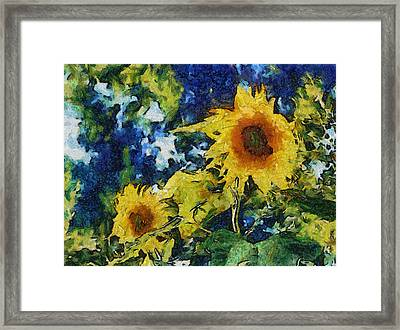 Sunflowers Framed Print by Michelle Calkins