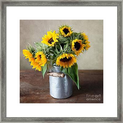 Sunflowers Framed Print by Nailia Schwarz