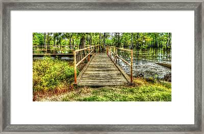 Swamp Dock Framed Print by Ester  Rogers