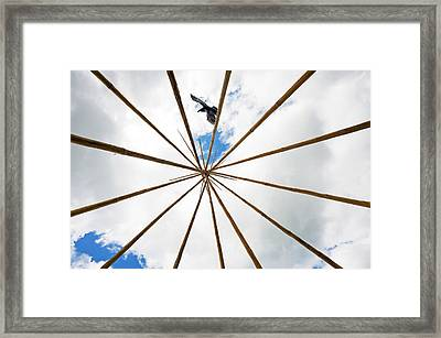 The Raven. Framed Print by Kelly Nelson